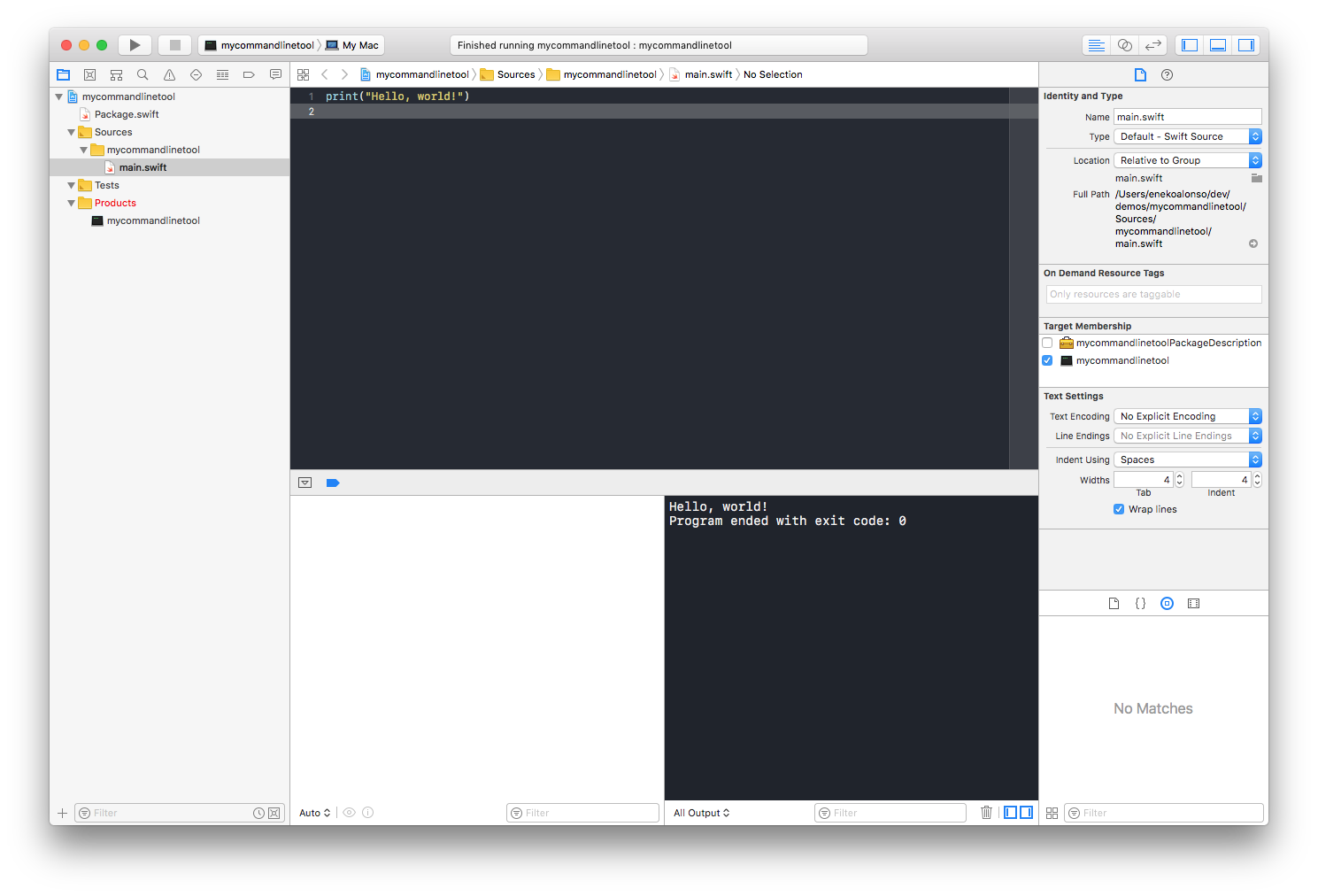 Running the project on Xcode